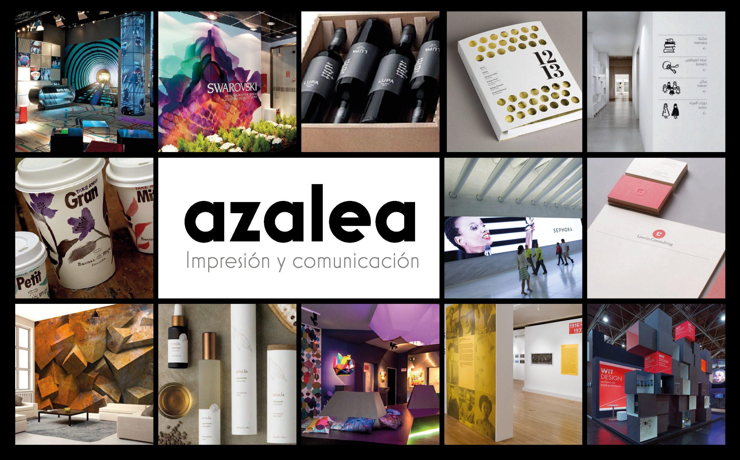 Presentación de Azalea I+C